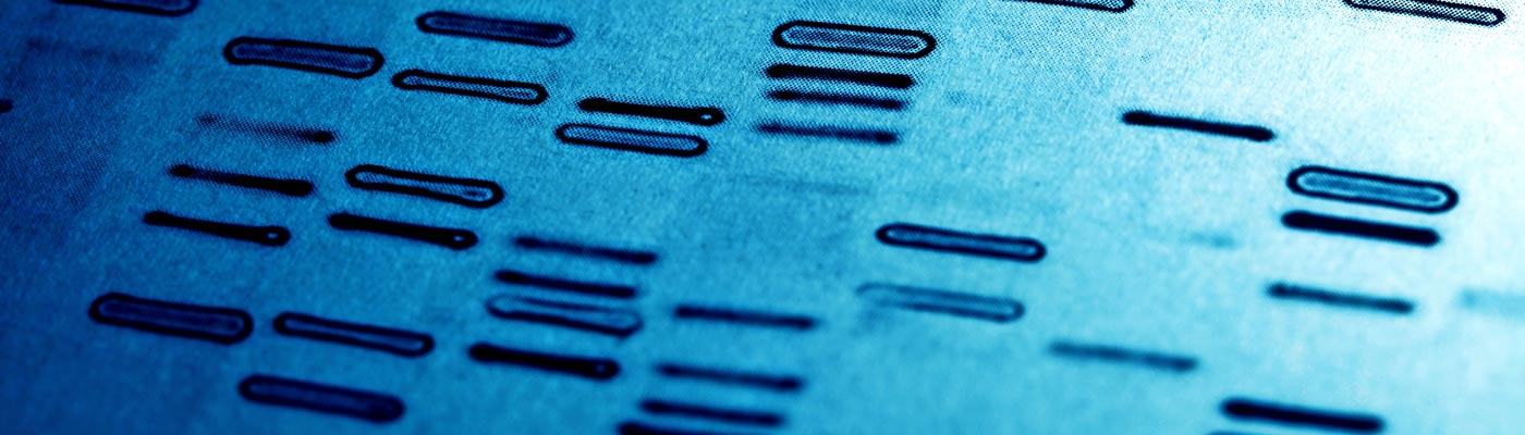 Human genome read-out